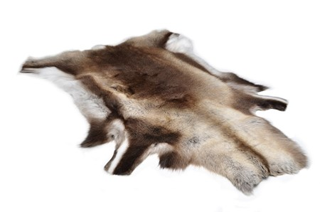 Skin from reindeer calf for decoration